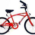 bicicleta-playera-halley-19330-rodado-20-ninos-D_NQ_NP_825154-MLA25772999815_072017-F
